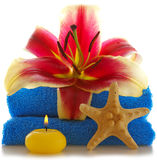 Spa setting with lily flower. Stock Images