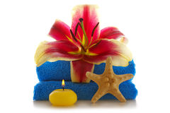 Spa setting with lily flower. Stock Image