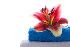 Spa setting with lily flower. Stock Photography
