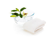 Spa setting with lily isolated on white background. Spa setting with white lily isolated on the white background Royalty Free Stock Images