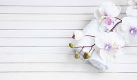 SPA setting with orchid flower and towels, overhead shot. SPA setting with white orchid flower and bath towels, overhead shot Stock Image