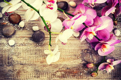 Spa setting with orchid flowers and massage stones. Wellness and Royalty Free Stock Photos