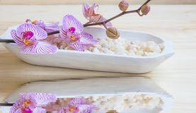 Spa setting with orchid and stones and water reflection, wellnes Stock Photo