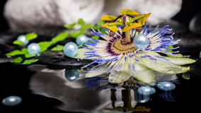 Spa setting of passiflora flower, branch fern, stacked towels, z Royalty Free Stock Image