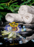 Spa setting of passiflora flower, branches, stacked towels, zen Royalty Free Stock Photo