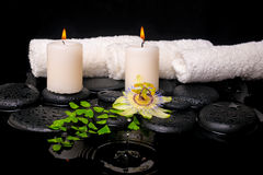 Spa setting of passiflora flower, green branch fern and candles Royalty Free Stock Photos