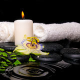 Spa setting of passiflora flower, green branch fern, towels Royalty Free Stock Photo
