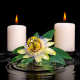Spa setting of passiflora flower, green leaf with drop and candl Stock Image