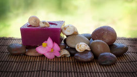 Spa setting with stones and shells Royalty Free Stock Photos