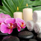 Spa setting of twig stripped violet orchid (phalaenopsis ) Stock Images