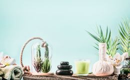 SPA setting with wellness equipment, massage tools , towels and succulent plants at blue background with palm leaves. Healthy. Lifestyle, calmness, modern royalty free stock photography