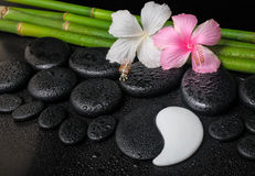 Spa setting of white, pink hibiscus flowers, symbol Yin Yang an. D natural bamboo on zen basalt stones with drops, closeup stock photo