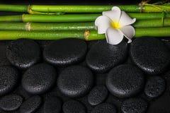Spa setting of zen basalt stones, white flower frangipani and na Royalty Free Stock Photos