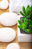 Spa Settings on beige  thin bamboo mat. Green flower, stones, towel and mat Royalty Free Stock Images