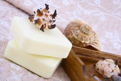 Spa shell Royalty Free Stock Photo