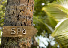 Spa sign. Hanging on palm tree, Maldives Royalty Free Stock Image