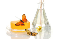 Spa soap and oils Royalty Free Stock Photos