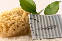 Spa Soap and Sponge Stock Images