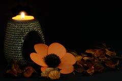 Spa stearinljus och blommor arkivbild