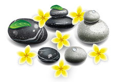 Spa stenar blommor vektor illustrationer
