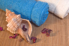 Spa still-life. Royalty Free Stock Photo