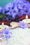 Spa Still Life. Relaxing and beautiful spa still life with candles, purple flowers and bath salts Royalty Free Stock Photo