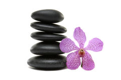 Spa still life. Pink orchid and stones  on white Royalty Free Stock Photo