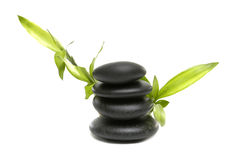 Spa still life. Bamboo leaves and black stones Stock Photos
