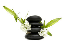 Spa still life. With white flowers and zen stones Stock Image