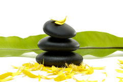Spa still life. Zen pebbles and green banana leaf with flower petals Royalty Free Stock Photo