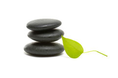 Spa still life. Zen pebbles and a young green leaf on white background Stock Photo