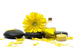 Spa still life. Sunflower and spa stones with yellow candle Stock Images