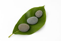 Spa still life. Pebbles on green leaf - isolated Royalty Free Stock Photos