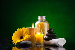Spa still life Royalty Free Stock Image