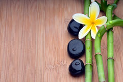 Spa still life background Stock Image