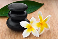 Spa still life background Stock Images