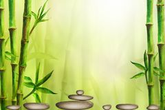 Spa still life background with zen stones and green bamboo forest. Space for text vector illustration