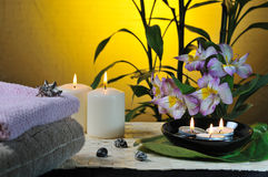 Spa still life with bamboo Royalty Free Stock Images