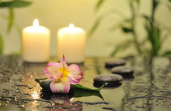Spa still life with bamboo Royalty Free Stock Image