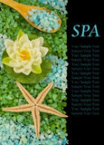 Spa still life on black background Royalty Free Stock Images