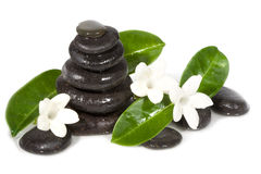 Spa still life with black stones Royalty Free Stock Photo