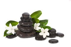 Spa still life with black stones. On white background Stock Images