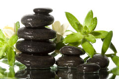 Spa still life with black stones Royalty Free Stock Image