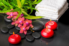 Spa still life of blooming twig red orchid flower, phalaenopsis Royalty Free Stock Photo