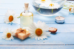 Spa still life with camomile flowers Royalty Free Stock Photography