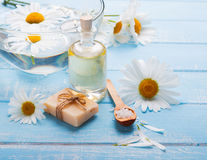 Spa still life with camomile flowers Stock Image