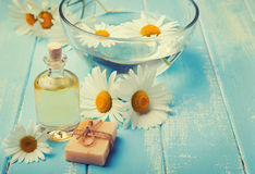 Spa still life with camomile flowers. Toned photo Royalty Free Stock Image