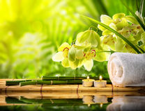 Spa Royalty Free Stock Images