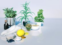 Spa still life with drug plants and cosmetic products on light gray background royalty free stock photography