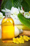 Spa still life with essential oil Stock Photos